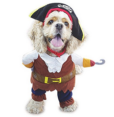 tiny dog Halloween costumes